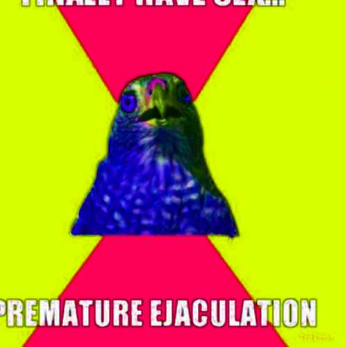 main causes of premature ejaculation